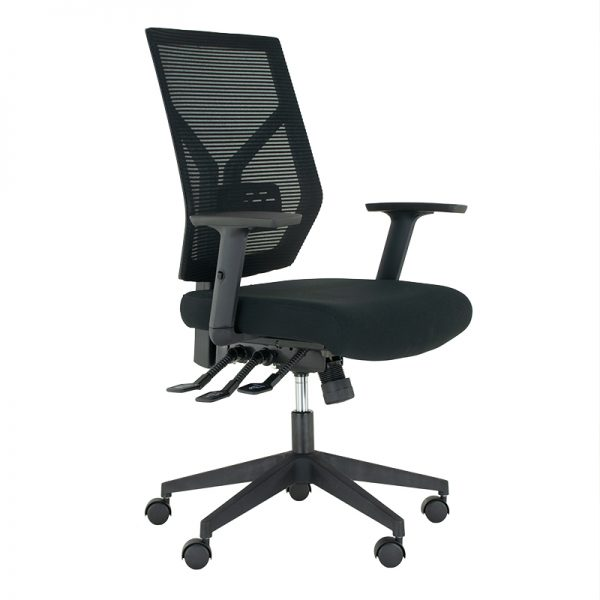 Mesh Ergo Office Chair Product